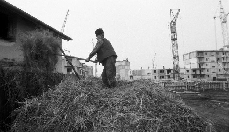 """""""Olyanok voltak, mint a vonalas füzet"""" – belestünk a kommunizmusban ledózerolt hóstáti kertekbe (FOTÓKkal)"""
