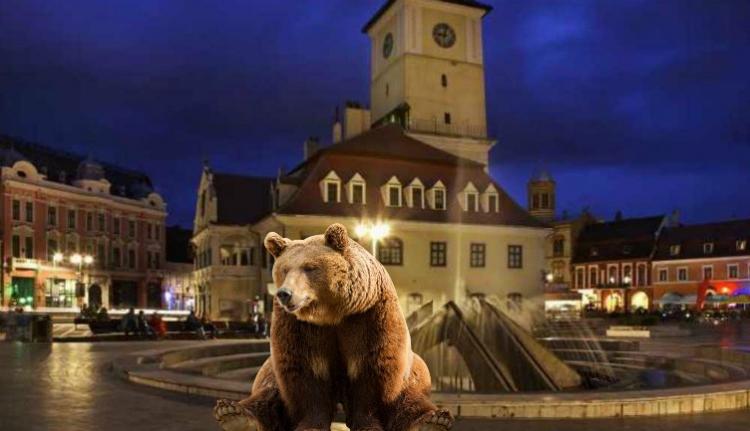 Saját székházukban látogatta meg a brassói erdészeket egy medve
