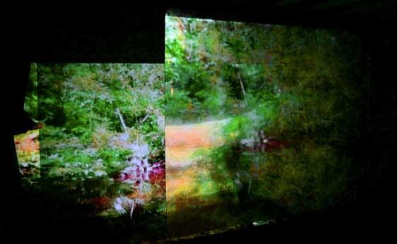 in-vivo-tempo-noorderlicht-foto-agenda