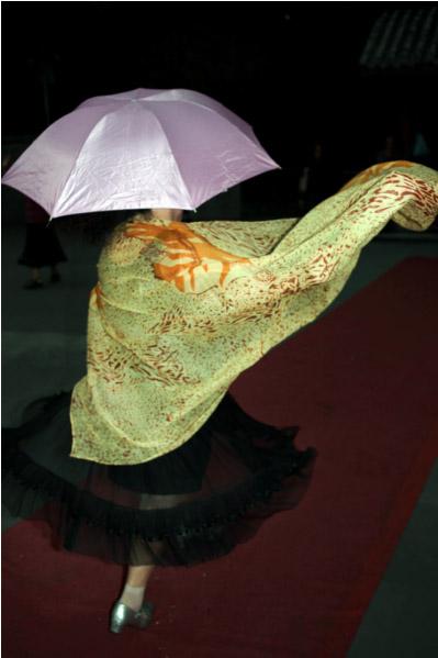 Feng Li fototentoonstelling bij Stieglitz19