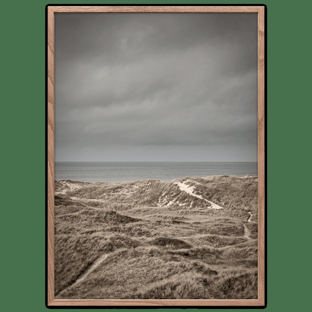 Skagens klitter plakat