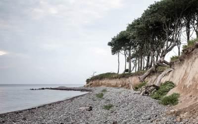 Naturfotografi – Naturen, landet og fotografiet