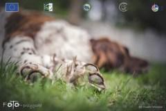 Plener-02-FOTO-Przygoda-w-Świdwinie-Wiosna-19-0896b