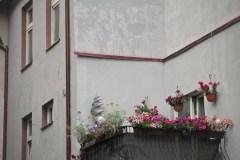 FOTO-Przygoda-w-Połczynie-Zdroju-Wiosna-19-Anna-Szewczyk-079a