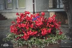 FOTO-Przygoda-w-Połczynie-Zdroju-Wiosna-19-Małgorzata-Klusek-002a