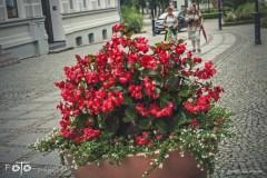 FOTO-Przygoda-w-Połczynie-Zdroju-Wiosna-19-Małgorzata-Klusek-017a