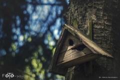 FOTO-Przygoda-w-Połczynie-Zdroju-Wiosna-19-Marcin-Dasiniewicz-002a