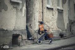 FOTO-Przygoda-w-Połczynie-Zdroju-Wiosna-19-Marcin-Dasiniewicz-007a