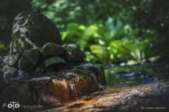 1-FOTO-Przygoda-w-Połczynie-Zdroju-Wiosna-19-0102b