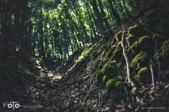 5-FOTO-Przygoda-w-Połczynie-Zdroju-Wiosna-19-1616-1624b