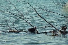 FOTO-Przygoda-w-Połczynie-Zdroju-Wiosna-19-Renata-Jasiul-063a