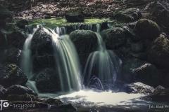 FOTO-Przygoda-w-Świdwinie-Wiosna-19-Ewa-Prygiel-060a