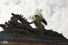 FOTO-Przygoda-w-Świdwinie-Wiosna-19-Katarzyna-Dągielska-012a