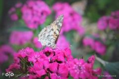 FOTO-Przygoda-w-Świdwinie-Wiosna-19-Magda-Jeziorna-002a