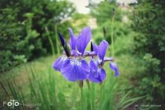 FOTO-Przygoda-w-Świdwinie-Wiosna-19-Magda-Jeziorna-049a