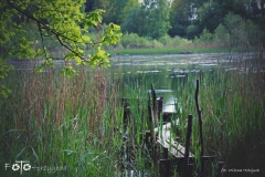 FOTO-Przygoda-w-Świdwinie-Wiosna-19-Milena-Hołojuch-013agotowe