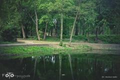 FOTO-Przygoda-w-Świdwinie-Wiosna-19-Paulina-Sadło-026a