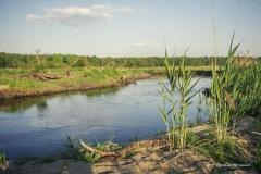 FOTO-PSTRYK - Dolina Rzeki Iny [Maj 18] 065b
