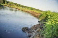 FOTO-PSTRYK - Dolina Rzeki Iny [Maj 18] 073b