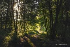 FOTO-PSTRYK - Dolina Rzeki Iny [Maj 18] 309b