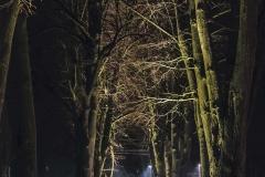FOTO-Pstryk w plenerze - Goleniów Nocą [Luty 19] 048bb