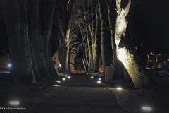 FOTO-Pstryk w plenerze - Goleniów Nocą [Luty 19] - Irena Wiśniewska 003b