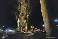 FOTO-Pstryk w plenerze - Goleniów Nocą [Luty 19] - Irena Wiśniewska 004b