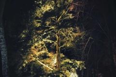 FOTO-Pstryk w plenerze - Goleniów Nocą [Luty 19] - Urszula Macul 010b