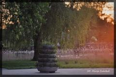 Alicja Szkołut [Kwiecień 18] 014 _Fotorgotowe