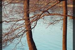 Marlena Szkołut [Kwiecień 18] 008_Fotorgotowe