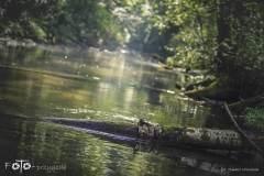 Dziennik-Podróżnika-007-nikon-Sierpień-19-218b