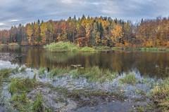 Plener-w-Podlipcach-Reportaż-Listopad-18-017-025agotowe