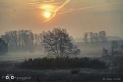 Spacery-Wiosna-17-067bgotowe