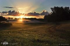 W-Lesie-Wrzesień-15-196-201bgotowe