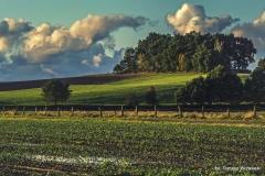 Przyroda - Krajobraz 065