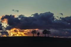 Przyroda - Krajobraz 067