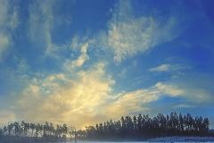 Przyroda - Krajobraz 070