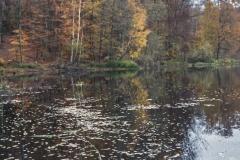 Plener w Podlipcach - Reportaż [Listopad 18] 053a