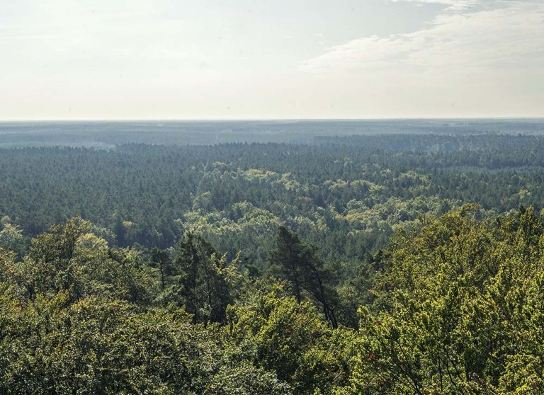 Góra Zielonczyn - Slider 05