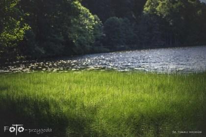 5 - FOTO-Przygoda w Połczynie-Zdroju [Wiosna 19] 1822b