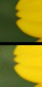 ISO_comparatie_sensibiltate_la_lumina