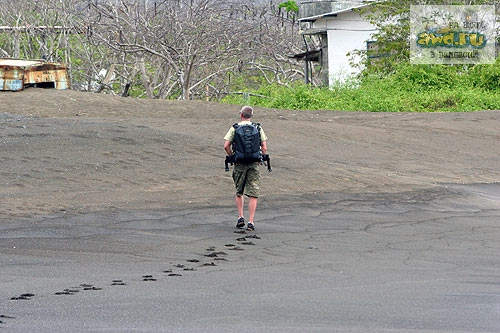 Галапагосские острова отзывы