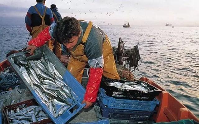 Sicilia, scatta il fermo pesca per un mese | Guida Sicilia