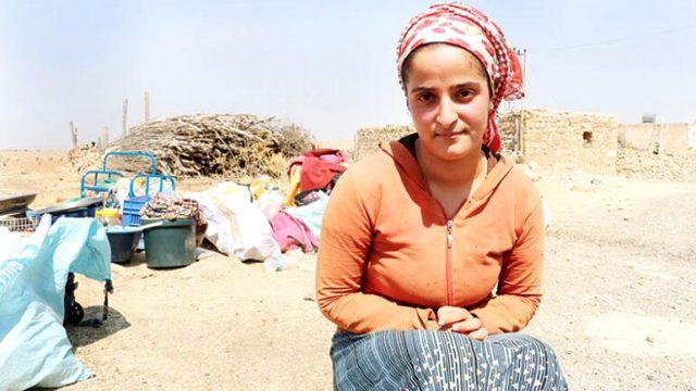 Sakarya'da darp edilen mevsimlik işçiler olayın iç yüzünü anlattı: Bize 'it sürüsü' dediler