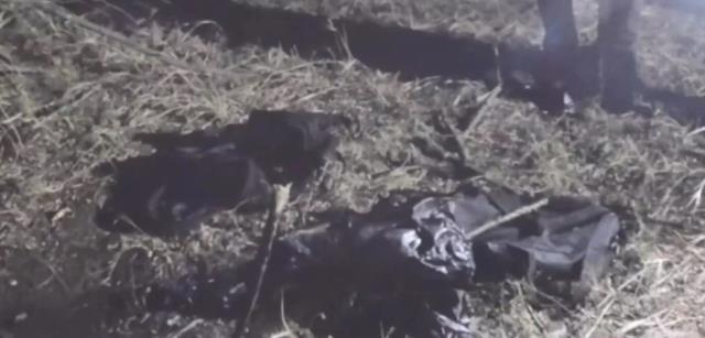 ukrayna da 16 yasindaki genc kiz 68 yasindaki 13792349 1875 m - Ukrayna'da 16 yaşındaki genç kız, 68 yaşındaki Türk iş insanını öldürüp parçaladı
