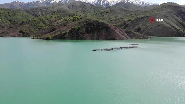 Erzincan'da alabalık üretimi ivme kazandı