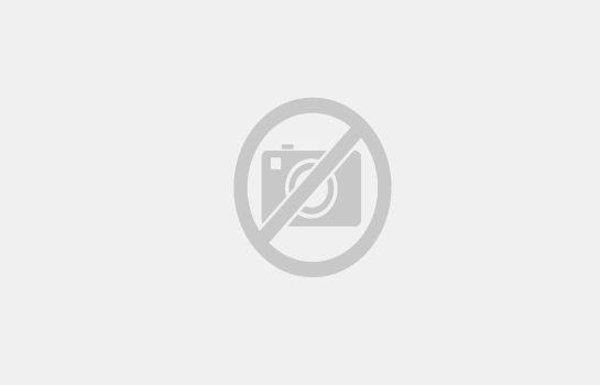 Hotels Und Bernachtungen Am Silver Dollar City Freizeitpark In Branson