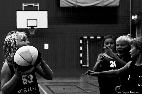 w2_20131026_basket