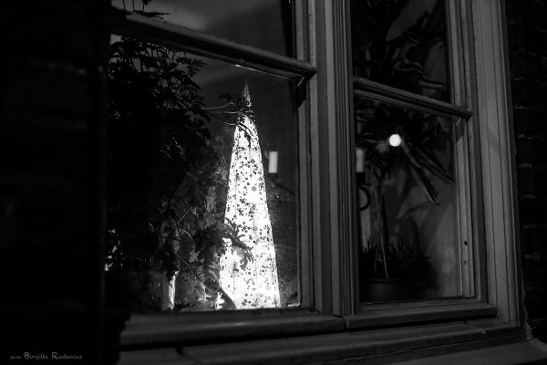bw_20131202_window