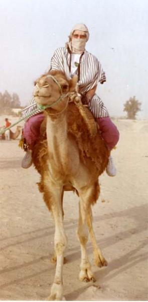 kameltur1